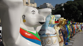Buenos Aires : L'ours manquant