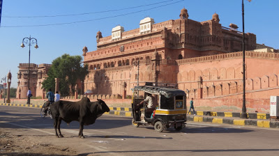 Rajasthan : Les forts