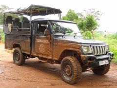 Safaris à Yala et Uda Walawe